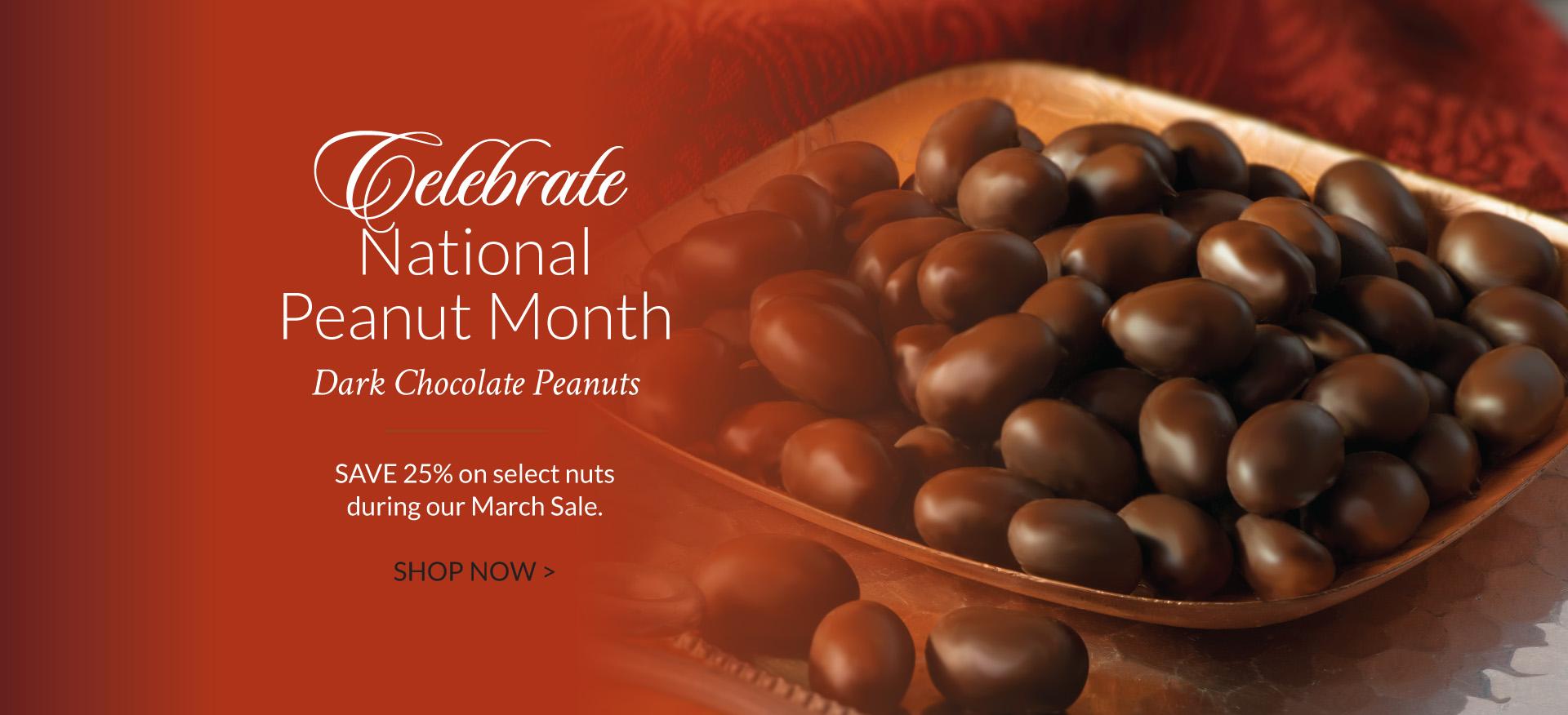 Dark Chocolate Peanuts